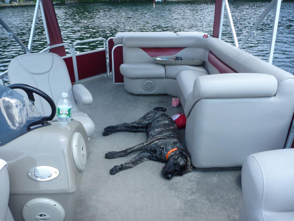 Any info on Weeres Pontoon boats? Looking at a used one to