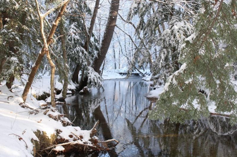 Name:  Gunstock River Thanksgiving 2011.jpg Views: 822 Size:  109.4 KB