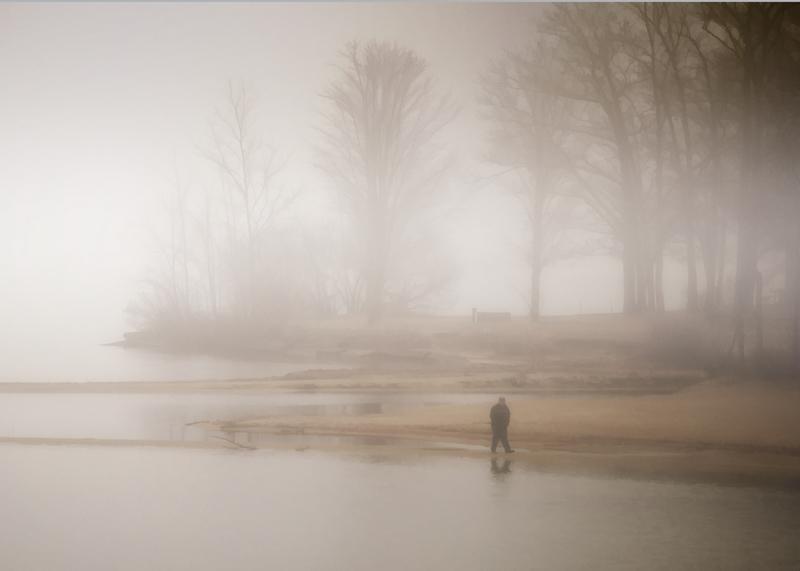 Name:  walk_in_the_fog_12-10-15.jpg Views: 1648 Size:  177.1 KB