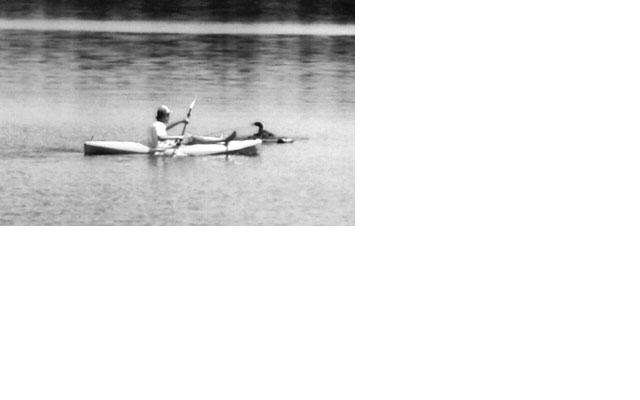 Name:  kayak.JPG Views: 5199 Size:  15.6 KB
