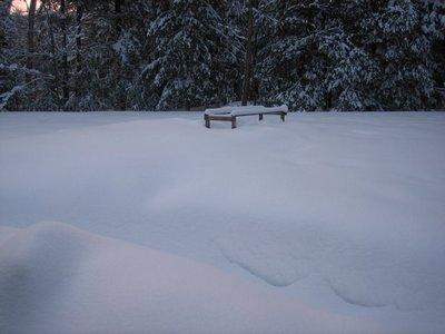 Name:  Snow Bound 2-28-08  3.jpg Views: 399 Size:  21.0 KB