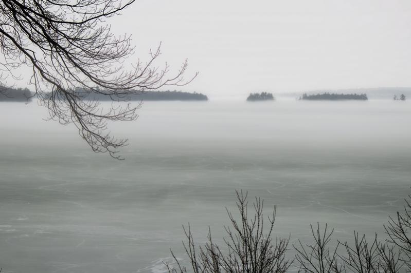 Name:  fog_3-10-16_lincoln_park.jpg Views: 551 Size:  46.3 KB