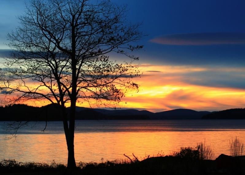 Name:  sunrise_11-2-12_10.jpg Views: 476 Size:  71.5 KB