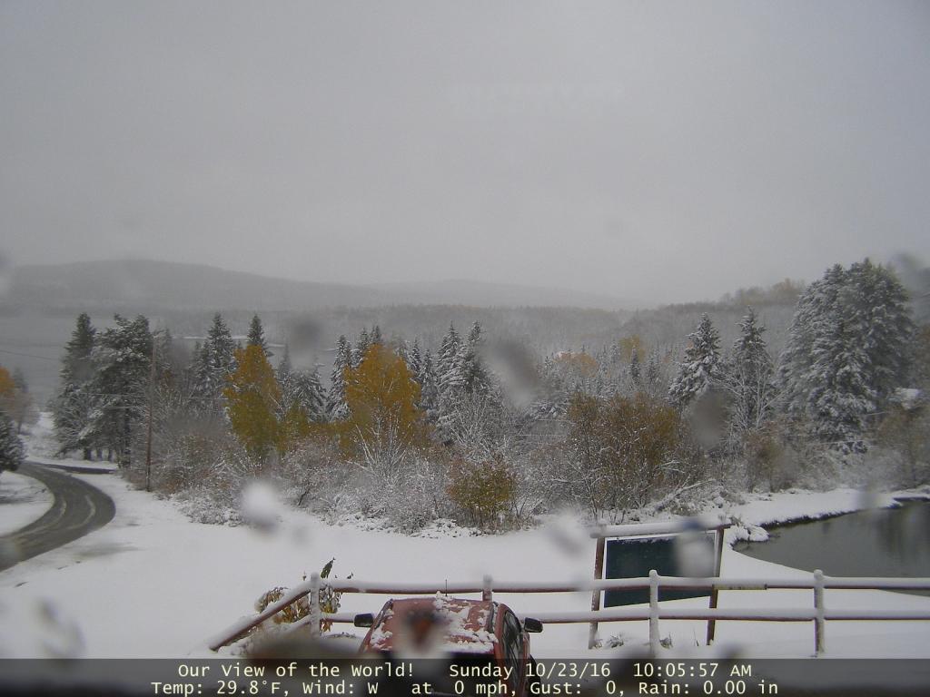 Name:  SNOW.jpg Views: 1414 Size:  85.3 KB