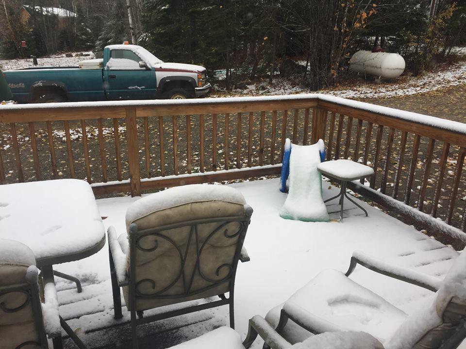 Name:  Errol got SNOW.jpg Views: 1439 Size:  119.6 KB