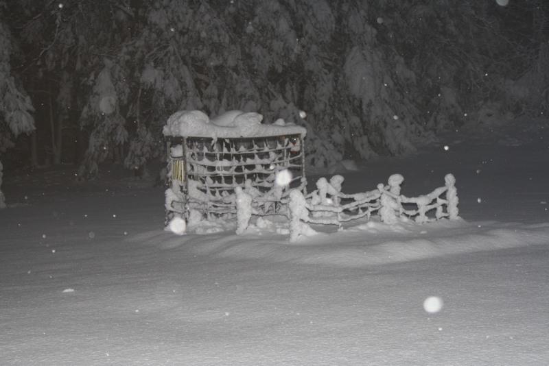 Name:  Snow 10-30-11 Gilford.jpg Views: 1591 Size:  89.0 KB