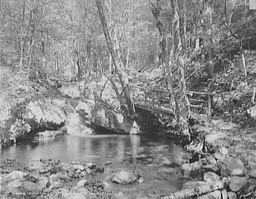 176Emerald_Pool_Ossipee_Park_1906