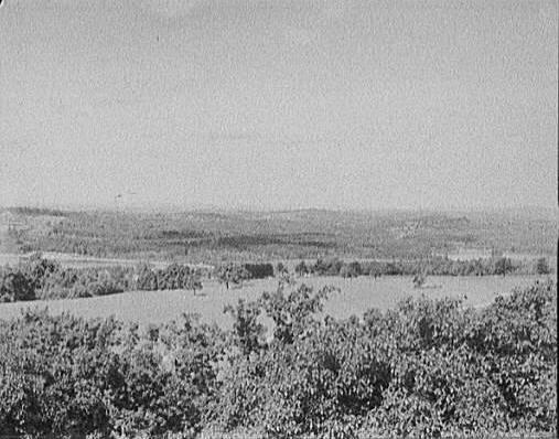 176Winni_Great_Asquam_ie_Squam_Shepards_Hill_1890-1910