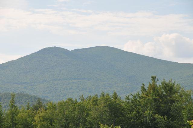 Ledge_Hill_Road_Logging_Trail_Mt_Shaw_Right_3_2009