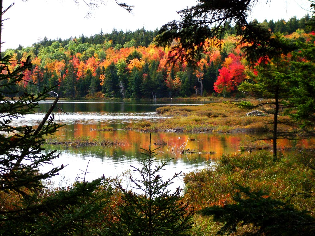 round pond 57 harbor ln, round pond, me is a home sold in round pond, maine.
